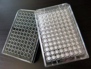 BIOMIMESYS® 96-well plate
